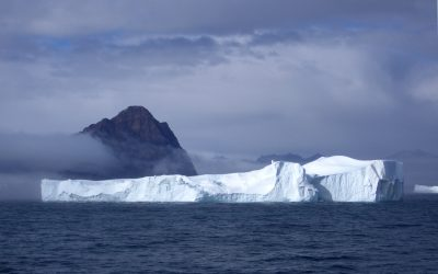 Darrel iceberg